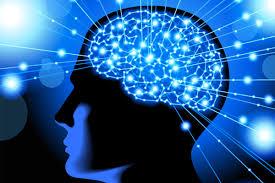 Neurocyclin – kako funckcionira – ebay – instrukcije