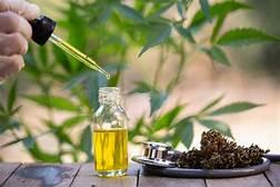 Cannabis Oil - bolje raspoloženje – gdje kupiti – recenzije – krema